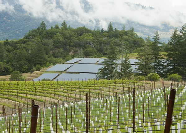 Upcoming Event - Schramsberg's Earth Day Virtual Tasting - Exploring Schramsberg's Green Efforts