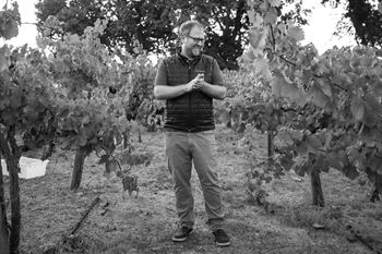 Winemaker, Dan Petroski