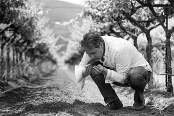 Winemaker, Ivo Jeramaz