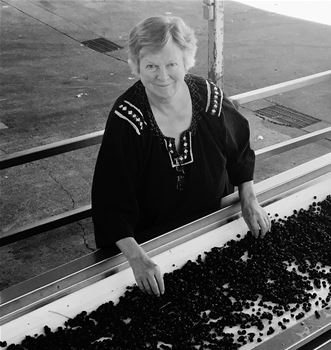 Winemaker, Kristi  Koford