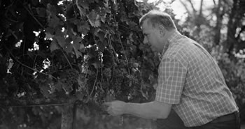 Winemaker, William Ballentine