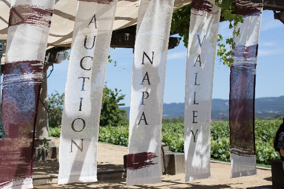 Auction Napa Valley Projected to Raise More Than $15.5 Million for Health and Education