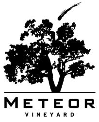 Blend Your Own Meteor Wine At Home With A Virtual Tasting Blending Session (Free Coravin System Included)